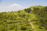 View over the Araratian Plain Towards Mount Ararat  Armenia