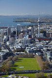 Victoria Park and Central Business District  Auckland  North Island  New Zealand
