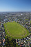 Avondale Racecourse  Auckland  North Island  New Zealand