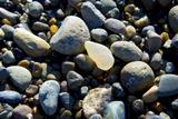 Haida Gwaii Islands  British Columbia Agates are Found on Many of the Beaches on Graham Island