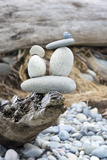 Us  Wa  Dungeness Spit Rock Cairns on Driftwood