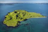 Volcanic Craters on Browns Island  or Motokorea  Hauraki Gulf  Auckland  North Island  New Zealand