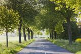 Denmark  Mon  Magleby  Country Road