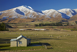 Old Farm Buildings and Kakanui Mountains  Maniototo  Central Otago  South Island  New Zealand