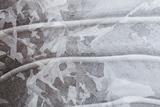 Utah  Abstract Frozen Ice Pattern  Mill Creek  Moab