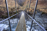 A Long Suspension Bridge over a River on the Fox Glacier Track  Wanaka  South Island  New Zealand