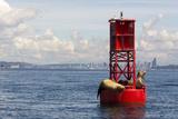 Us  Wa  Seattle California Sea Lions Relax in Sun on Channel Marker Buoy