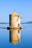 The Spanish Windmill on the Lagoon of Orbetello  Tuscany