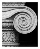Column detail  US Treasury Building  Washington  DC - Black and White Variant
