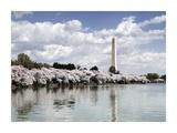 Washington Monument  Washington  DC - Vintage Variant