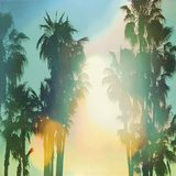 California Cool - Palm Giclée par Chuck Brody