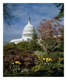 US Capitol  Washington  DC Number 3
