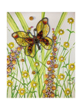 Butterflies  Yellow and Brown  2016