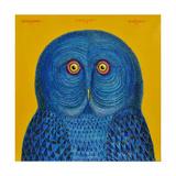 Blue Owl  2015