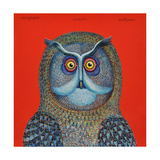 Long-Eared Owl  2015