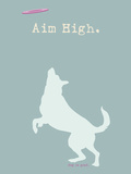 Aim High - Blue Version