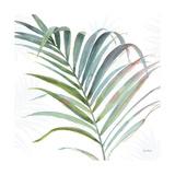 Tropical Blush V