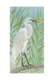 Egret by the Shore I