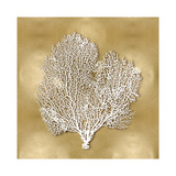 Sea Fan on Gold II