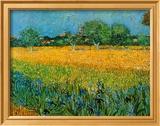 Vue d'Arles aux iris Reproduction encadrée par Vincent Van Gogh