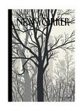 Sunlight on Twenty-third Street - The New Yorker Cover  January 23  2012