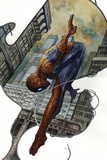 The Amazing Spider-Man 20 Variant Cover Art