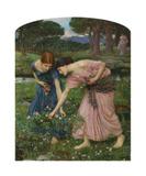 Gather Ye Rosebuds While Ye May  1909