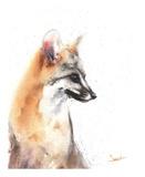 Grey Fox Reproduction d'art par Eric Sweet