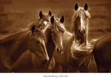 Belles de l'Ouest Reproduction d'art par Tony Stromberg