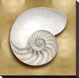 Ocean Gem on Gold II