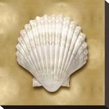 Ocean Gem on Gold IV