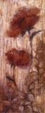 Long Tall Poppies II
