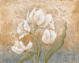 Fleurs Meditatives II