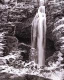 Nature's Jewel II