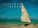 Vintage Zanzibar Island  Tanzania  Africa