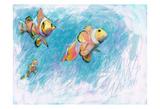 Clowfish Trio