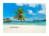 Tropical beach  Seychelles (detail)