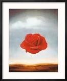 Rose Meditative, c.1958 Reproduction encadrée par Salvador Dalí