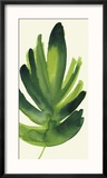Tropical Palm Leaf I