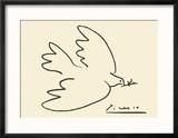 Dove of Peace Reproduction encadrée par Pablo Picasso