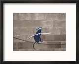 Tightrope Reproduction encadrée par Banksy