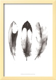 Watercolor Feathers II
