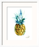 Pineapple Reproduction encadrée par Suren Nersisyan