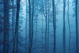 Wrapped in Blue Tableau sur toile par Philippe Sainte-Laudy