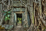 Ancient Stone Door and Tree Roots, Ta Prohm Temple, Angkor, Camb Tableau sur toile par F9photos