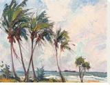 Six Palms