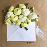 Envelope Bouquet