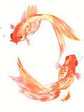 Goldfish Feng Shui