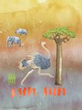 Ostrich Animal Wild Bird