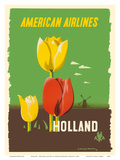 Holland - American Airlines - Tulips